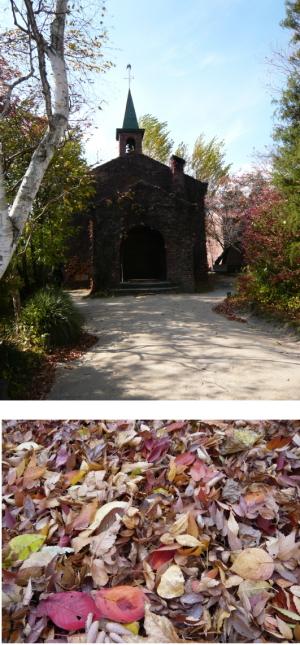 新緑の碌山館も良いけど、紅葉もよく似合う