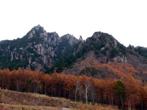 真ん中あたりの角ばった岩は「ローソク岩」と言うそうな